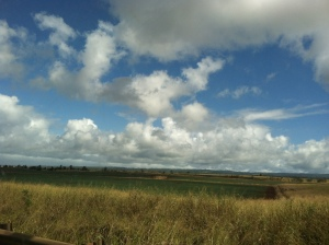 Driving around Oahu toward North Shore